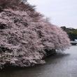 """上京して""""東京は凄い""""と驚きを感じたものは? ─ 首都東京に関する意識調査"""
