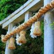 日本各地にある衝撃的な性のお祭り5つ―神奈川県川崎市「かなまら祭り」