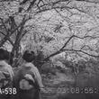 昭和7年の日本はアメリカでどう紹介されていたのか