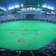 日米野球、日本投手陣がノーヒットノーラン達成