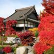 ドイツ人は浄土真宗を受け入れるのか? 欧州最大の日本仏教寺院「ドイツ惠光寺」の取り組み