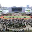 100円あれば、コーヒーもスイーツも楽しめる...実は女性に優しい「阪神競馬場」