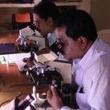 5300年前のミイラ 胃がんの原因になるピロリ菌を検出