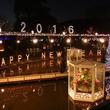 あしかがフラワーパークのイルミが新年バージョンに!