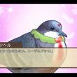 『はーとふる彼氏』、『はーとふる彼氏 Holiday Star』人間が鳥に恋をする禁断の乙女ゲームがPS4、PS Vitaでリリース開始