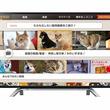 東芝「レグザ」向けアプリ「niconico」リリース。「レグザ」でニコニコ動画が視聴可能に
