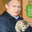 子猫を抱きしめる姿も… 2017年度版プーチン大統領のカレンダーがヤバい