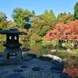 和と洋のコラボ!北区の旧古川庭園で紅葉が見ごろ