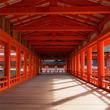 お寺が無かった地域では神社が菩提寺代わり?仏教と神道を使い分ける日本