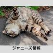 木村拓哉が「つま先立ち」!? カンヌ国際映画祭での「衝撃写真」で騒然