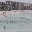 80人の『人間の鎖』! 海で溺れる人たちを救うため、見ず知らずの男女が団結