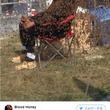 蜂のヒゲを61分間維持!世界記録樹立 カナダ人男性