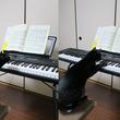 熱心に譜面を眺める黒猫が、おそるおそる「鍵盤」を触る姿が可愛い!