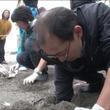絶滅危惧種のウミガメが湘南で産卵、「志村どうぶつ園」が密着84日の貴重映像を公開!