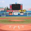 【マラソン】スポーツの聖地、神宮球場でリレーマラソン初開催!