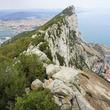 イベリア半島にあるのにイギリス領、ジブラルタルってどんなとこ?