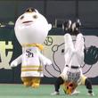 """つば九郎とドアラの""""二強""""を脅かせ 実は強烈なパ・リーグのマスコットたち"""