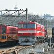 京都鉄博に青函トンネル機関車EH800形が到着! 北海道からはるばる 期間限定展示