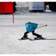 ロボットも負けられない?韓国で「ロボットスキー選手権」が開催