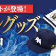 ホークス球団創設80周年記念プロコレヘルメットなど、プロコレアイテム販売中!!