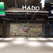 ARスポーツ「HADO」開発のmeleapが韓国の通信事業者KTと業務提携