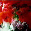 world's end girlfriend、花と光の映像で「生と死を巡り続ける命」を表現