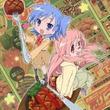 「らき☆すた」10巻限定版特典は「宮河家」のアニメ全話