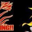 ボカロP・歌い手・踊り手・演奏者による総合エンターテイメント『NICOBARNINGツアー2013』が札幌、東京、大阪で開催決定!