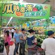 スイカだらけの盛夏到来、中国福建省のスーパーに