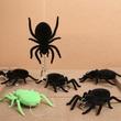 蜘蛛の糸はデンタルフロス? クモ型デンタルフロス「フロスパイダー」発売