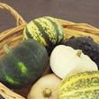 漢字で書かれてもイメージがわかない野菜・果物1位「玉蜀黍(とうもろこし)」