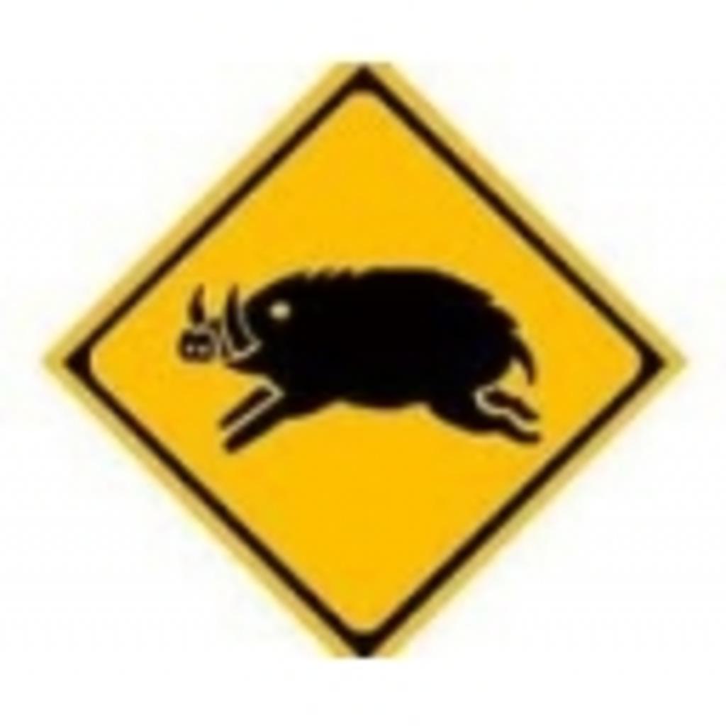 猪突猛進~目の前のニンジンを追いかけて~