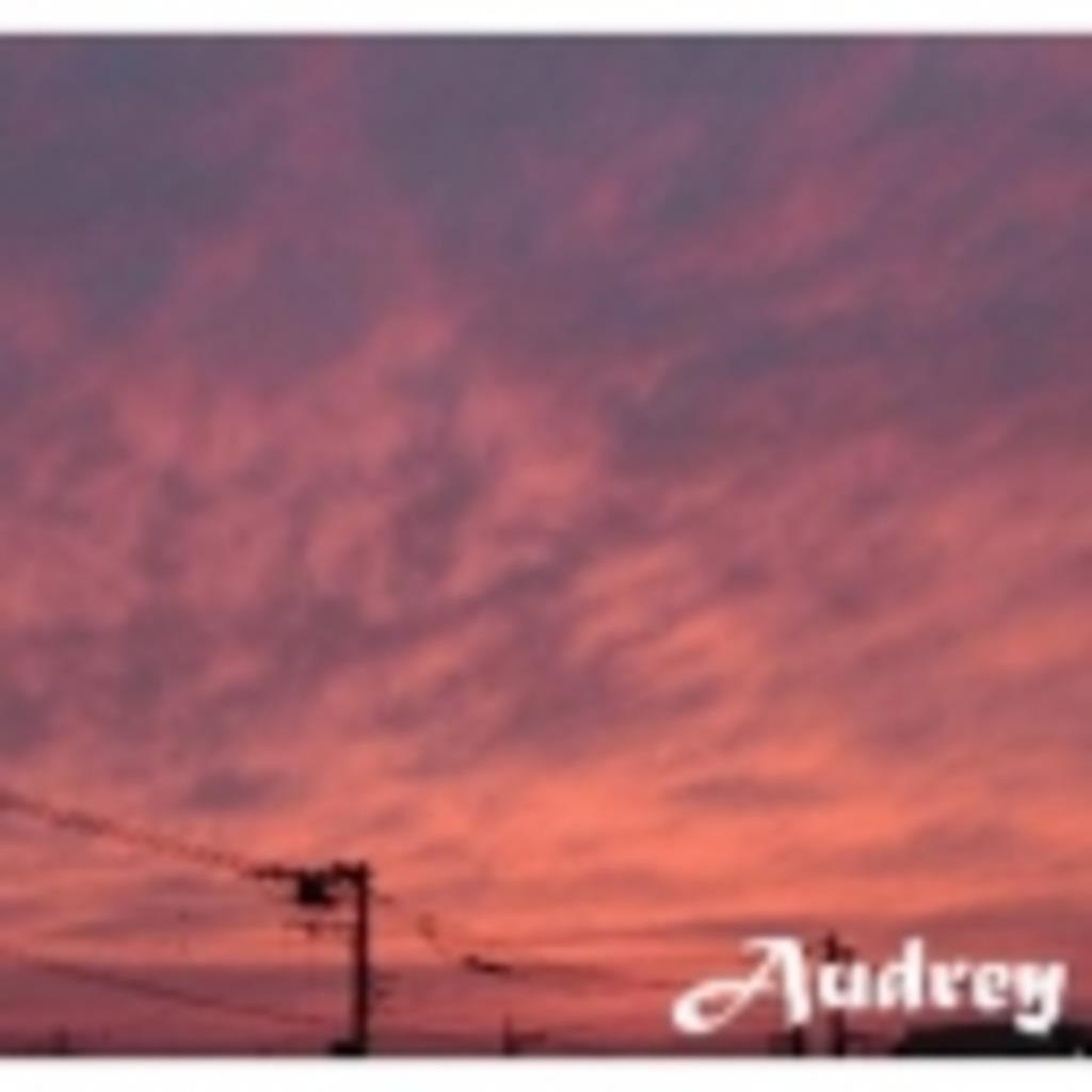 Audreyの生放送