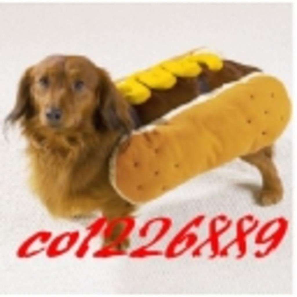 ホット犬のファーストフード店