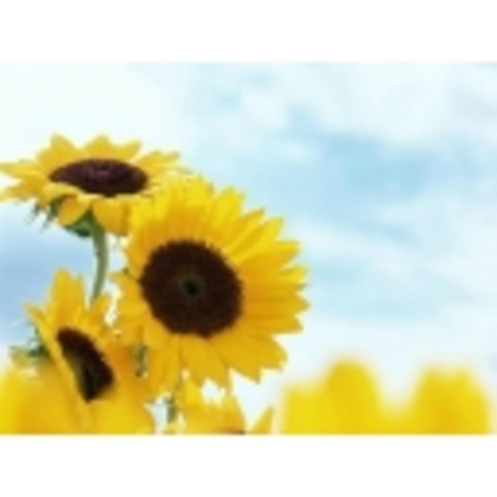 向日葵とタバスコとときどき山葵