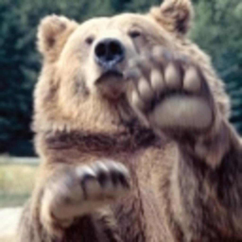 放送するクマ&タナケンも放送