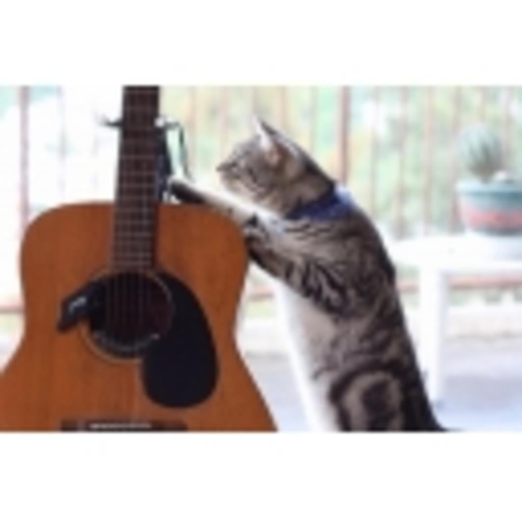 ギターが好き///ムツが好き?