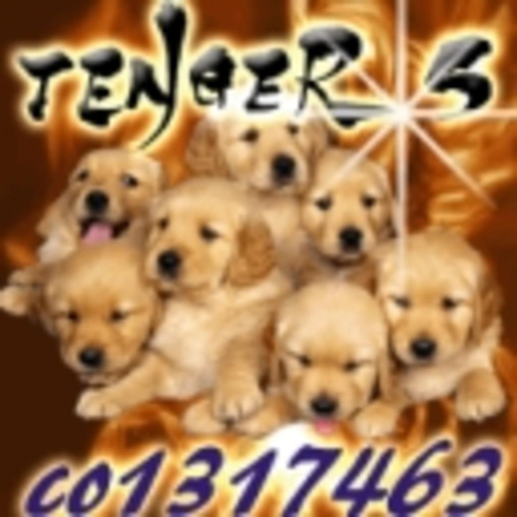 TENGER5(仮)