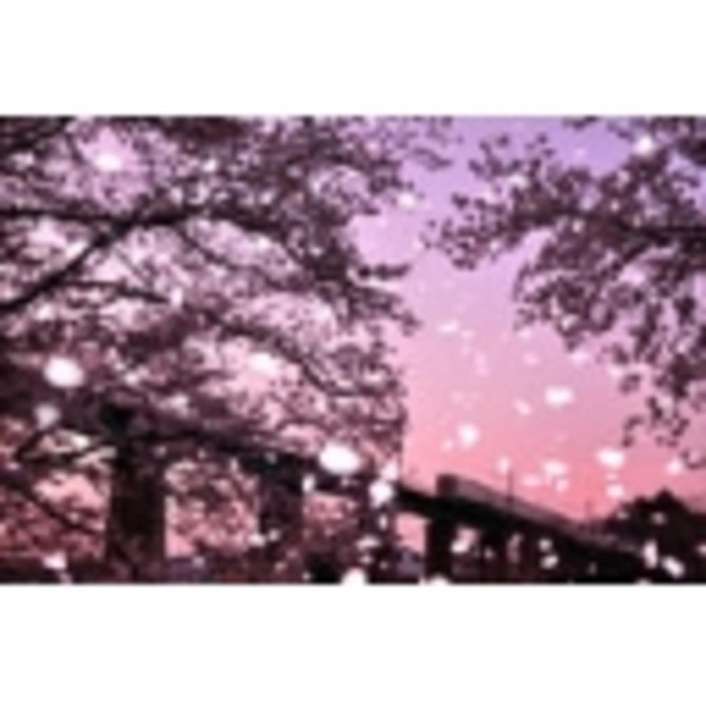 まいかの桜吹雪放送局