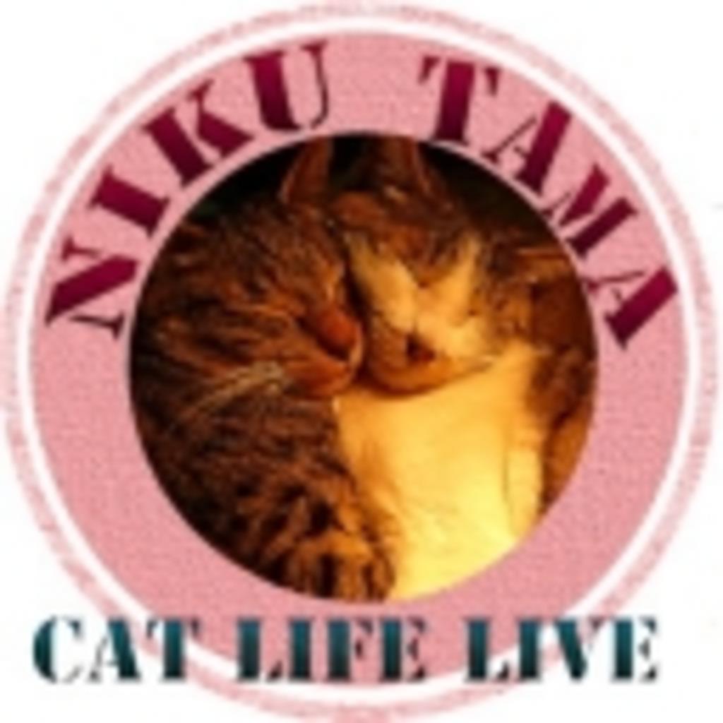 Nikutama Live