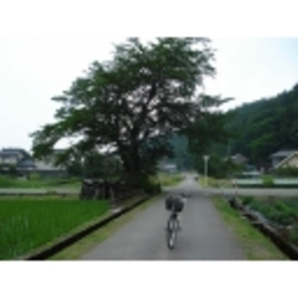 自転車総合コミュ