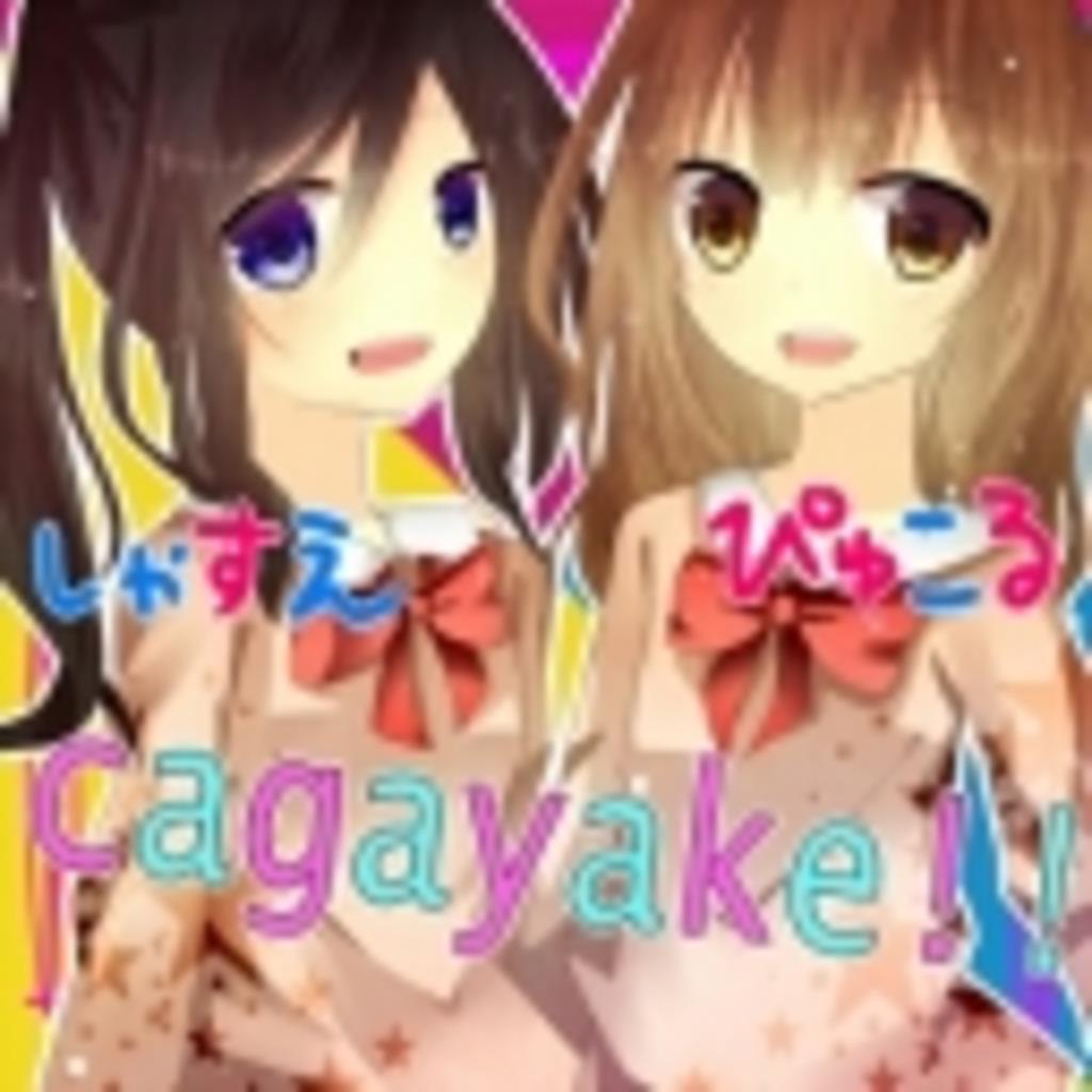 cagayake!!【-S&P-】