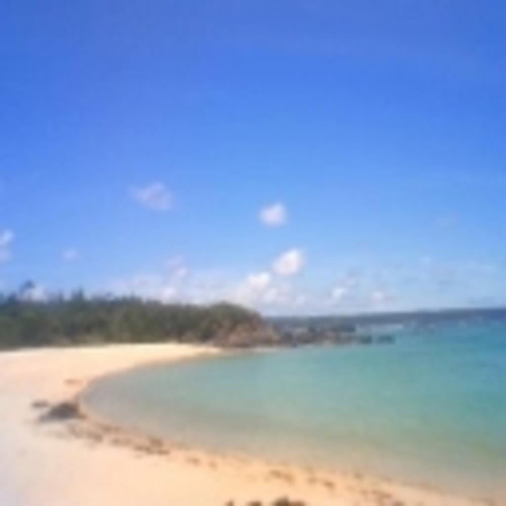 沖縄のまったりな空気お届けします