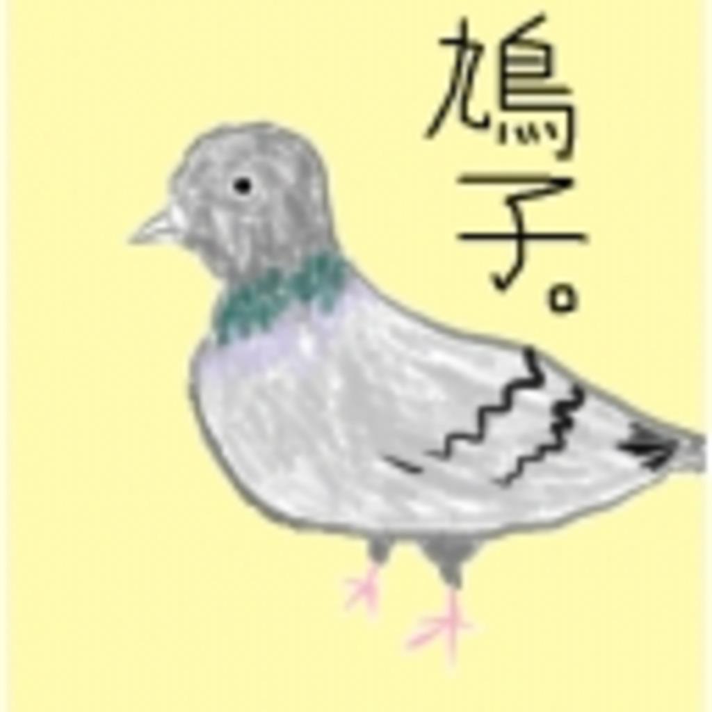 鳩子みゅ。(仮)