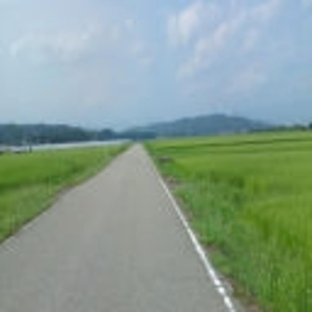 田んぼと砂利道
