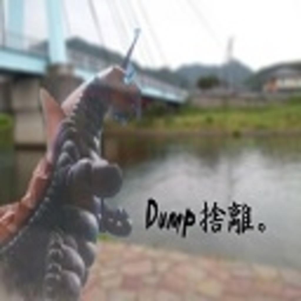 Dump捨離。