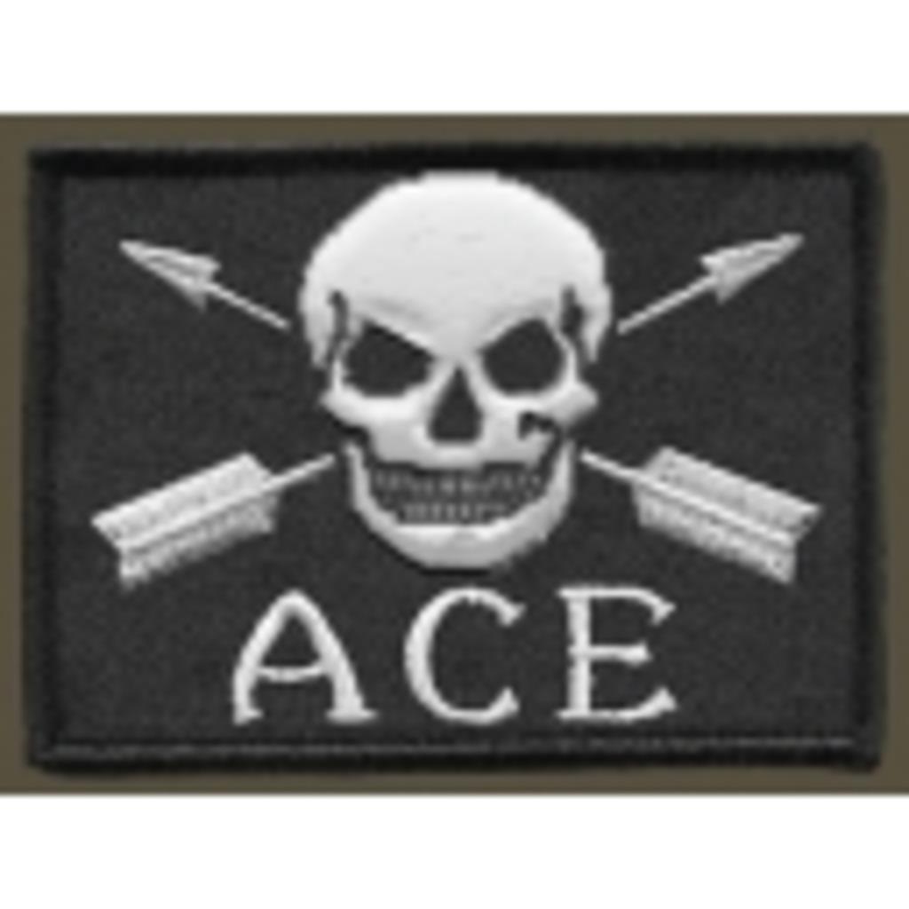 初心者でArmA2:ACE MOD( ArmA2 ACE Rookie Members: AARMs) ニコニコ支部