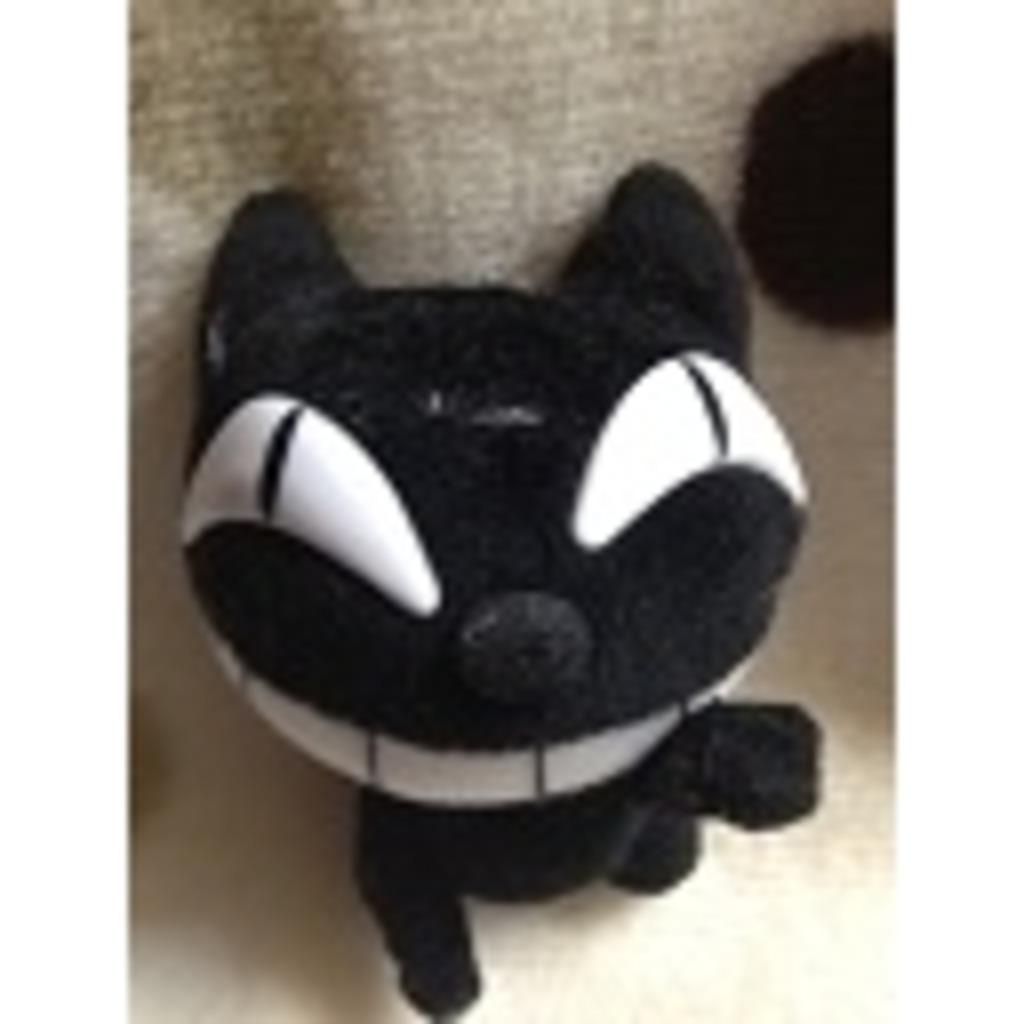黒猫がいる部屋
