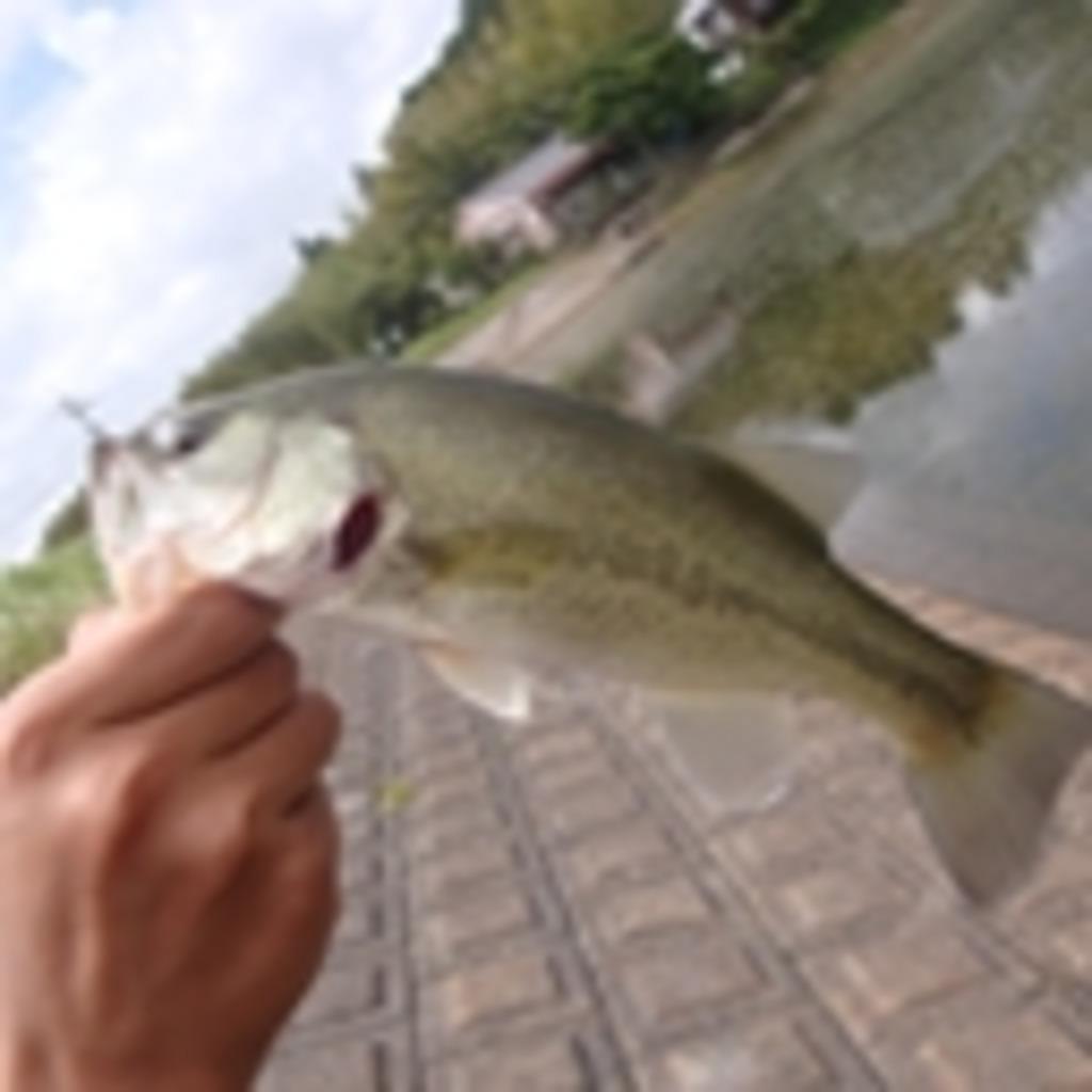 第2特殊魚爆釣機動隊