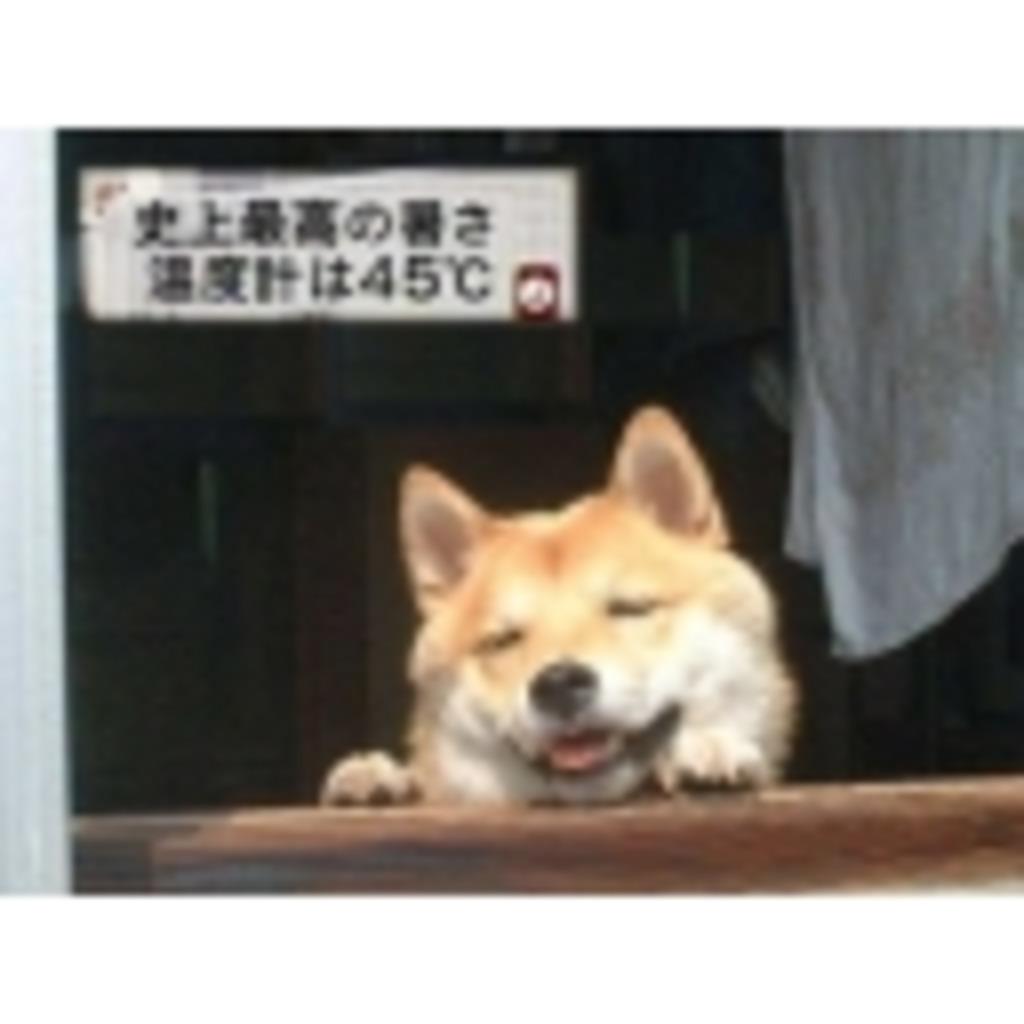 福井人がおくる怠惰な生活の日々
